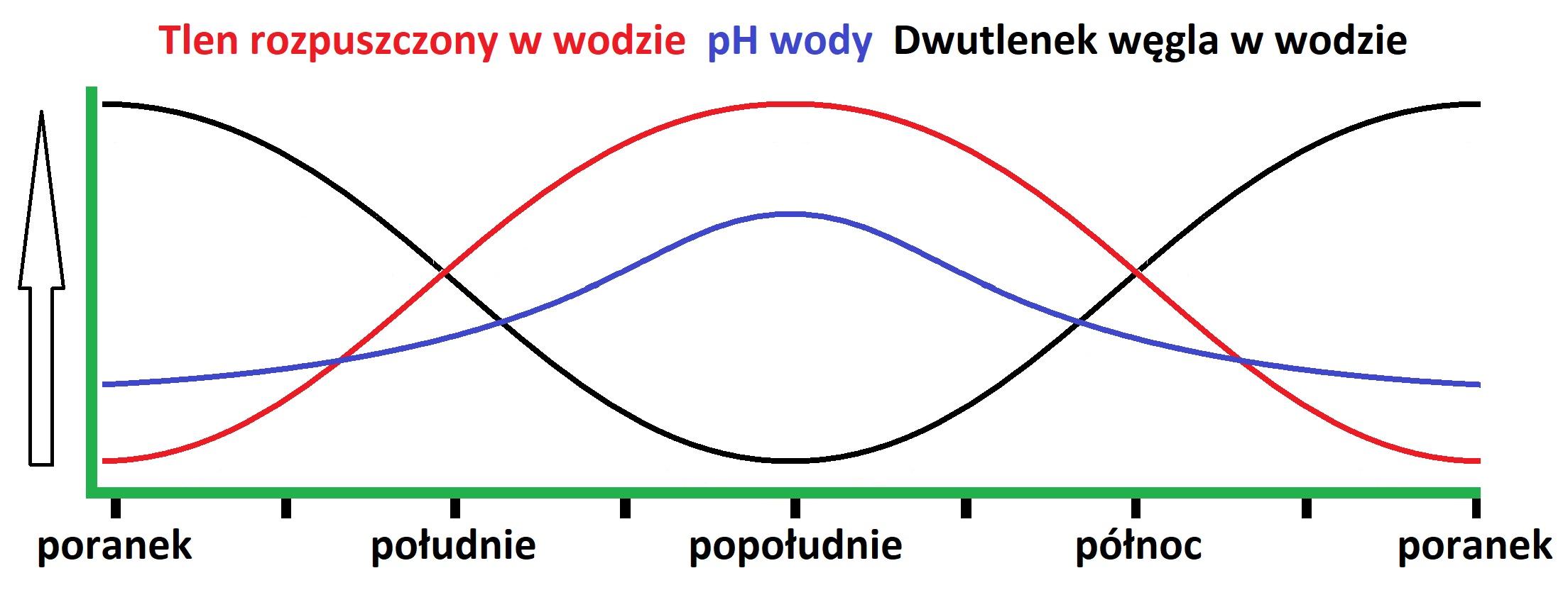 zależność CO2 O2 pH (foto: mn-tech.pl)